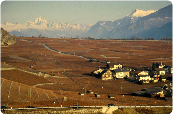 rhone valley - click on image to return